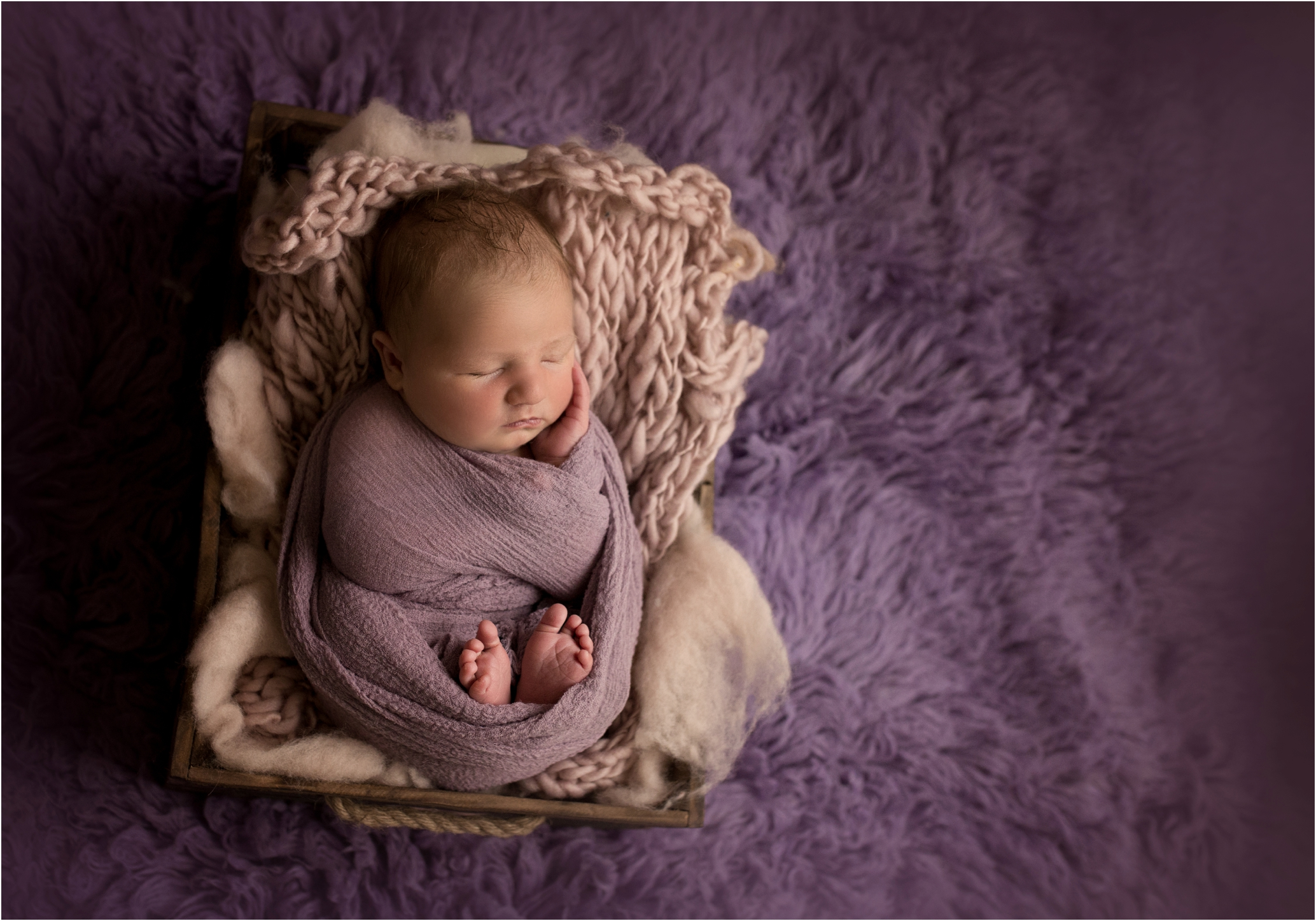 Newborn Photos Geelong_1355.jpg