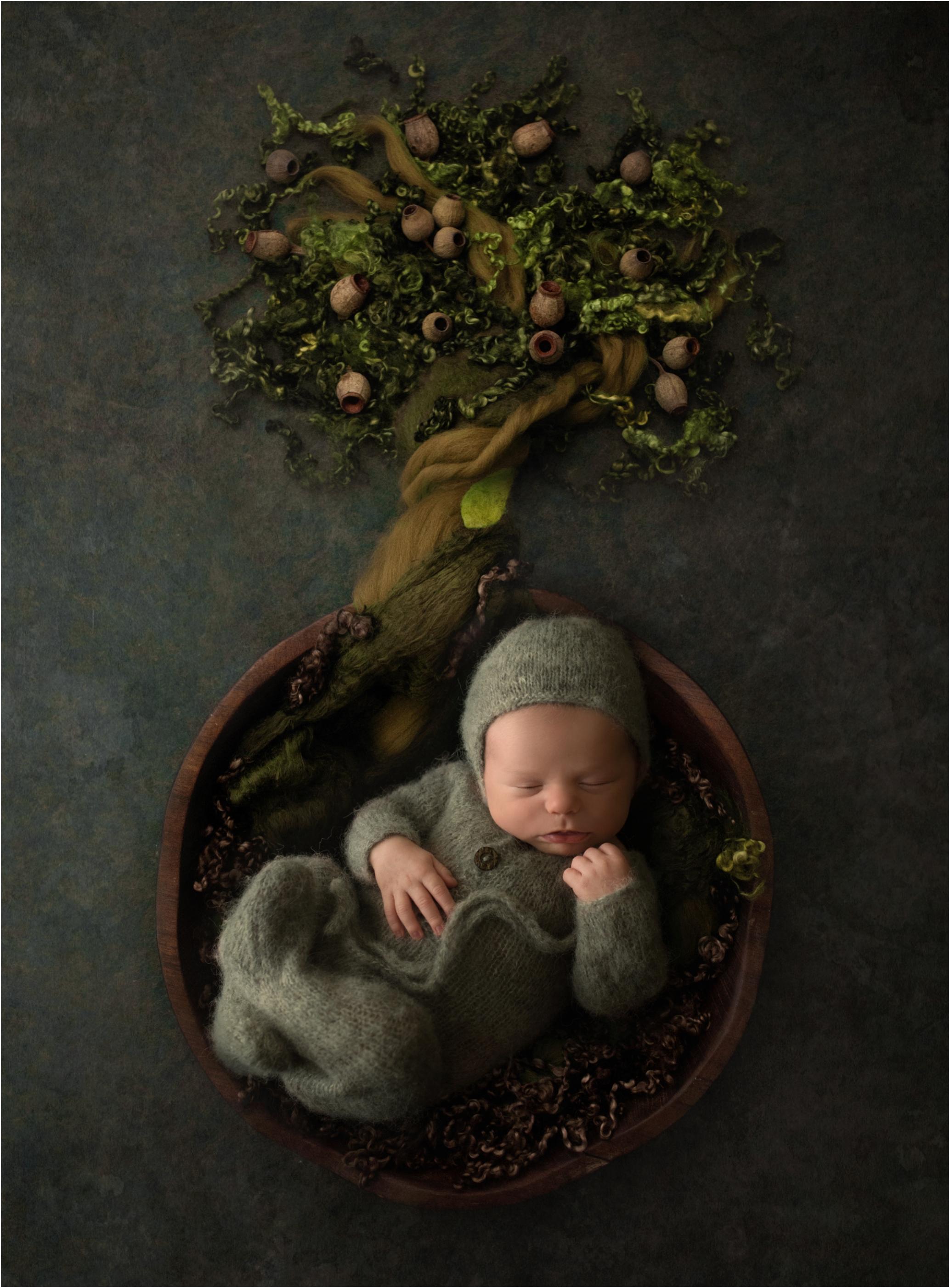 Newborn Photos Geelong_1418.jpg