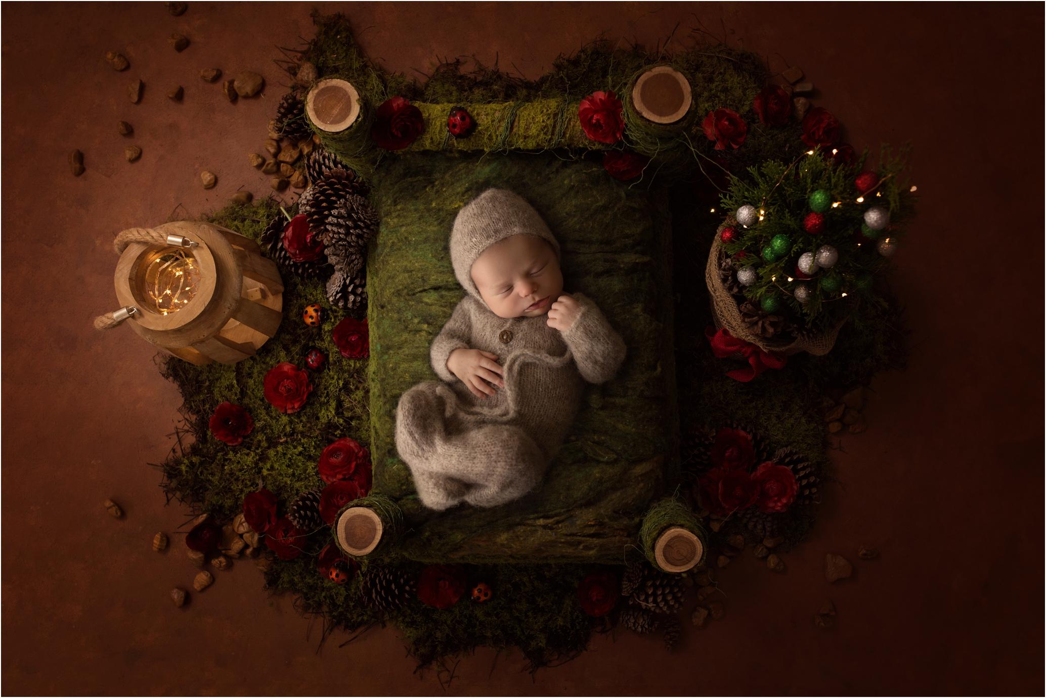 Newborn Photos Geelong_1421.jpg