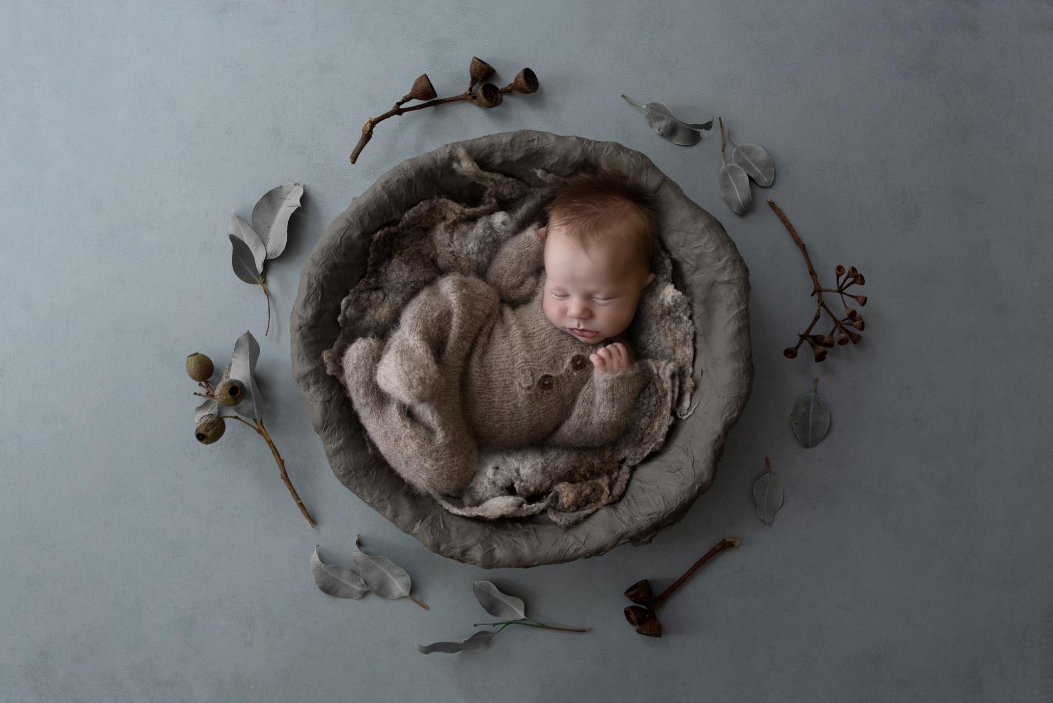 newborn Photos Geelong_1564.jpg