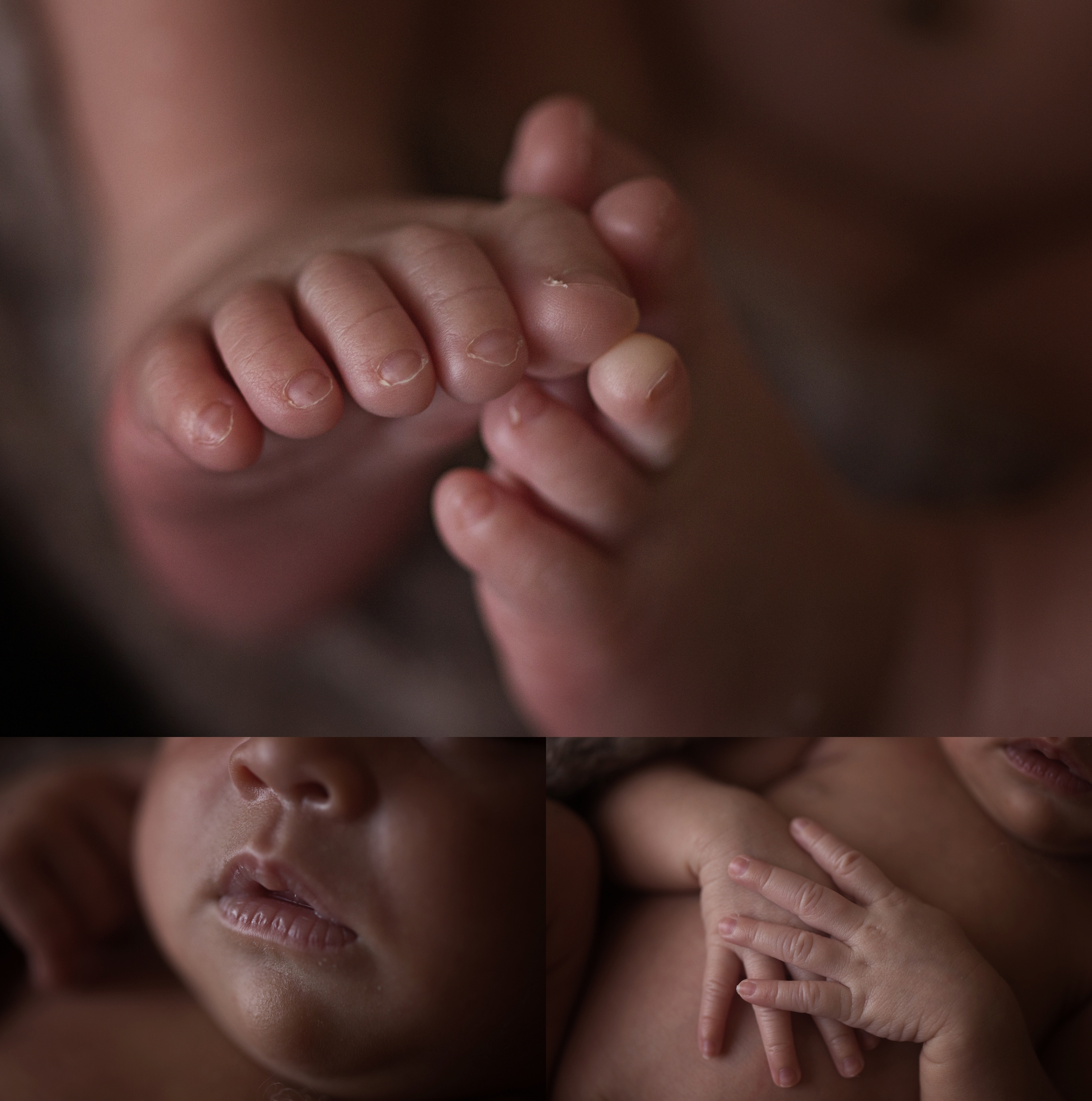 newborn Photos Geelong_1610.jpg