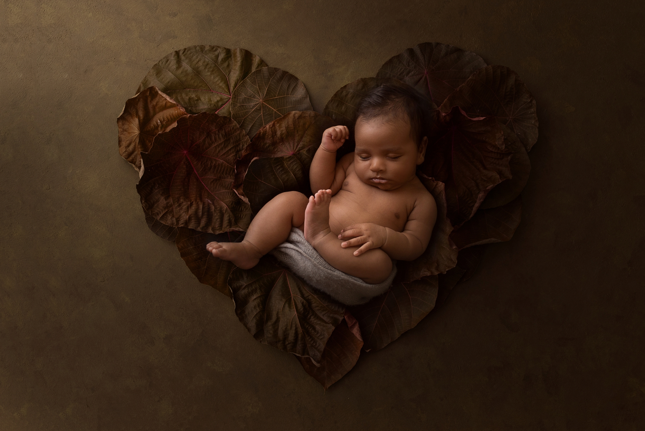 newborn Photos Geelong_1651.jpg