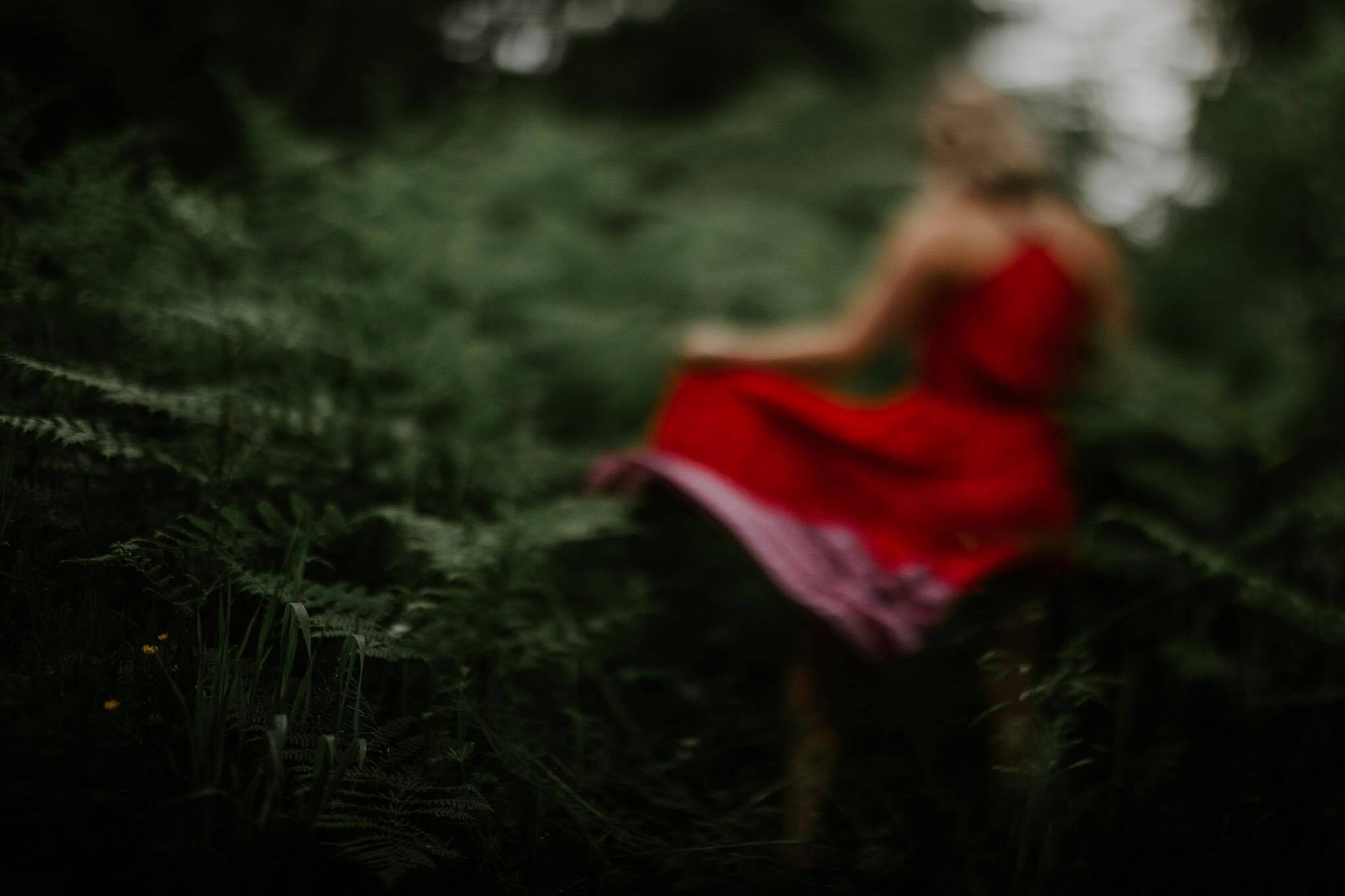 week 25 - freelensing