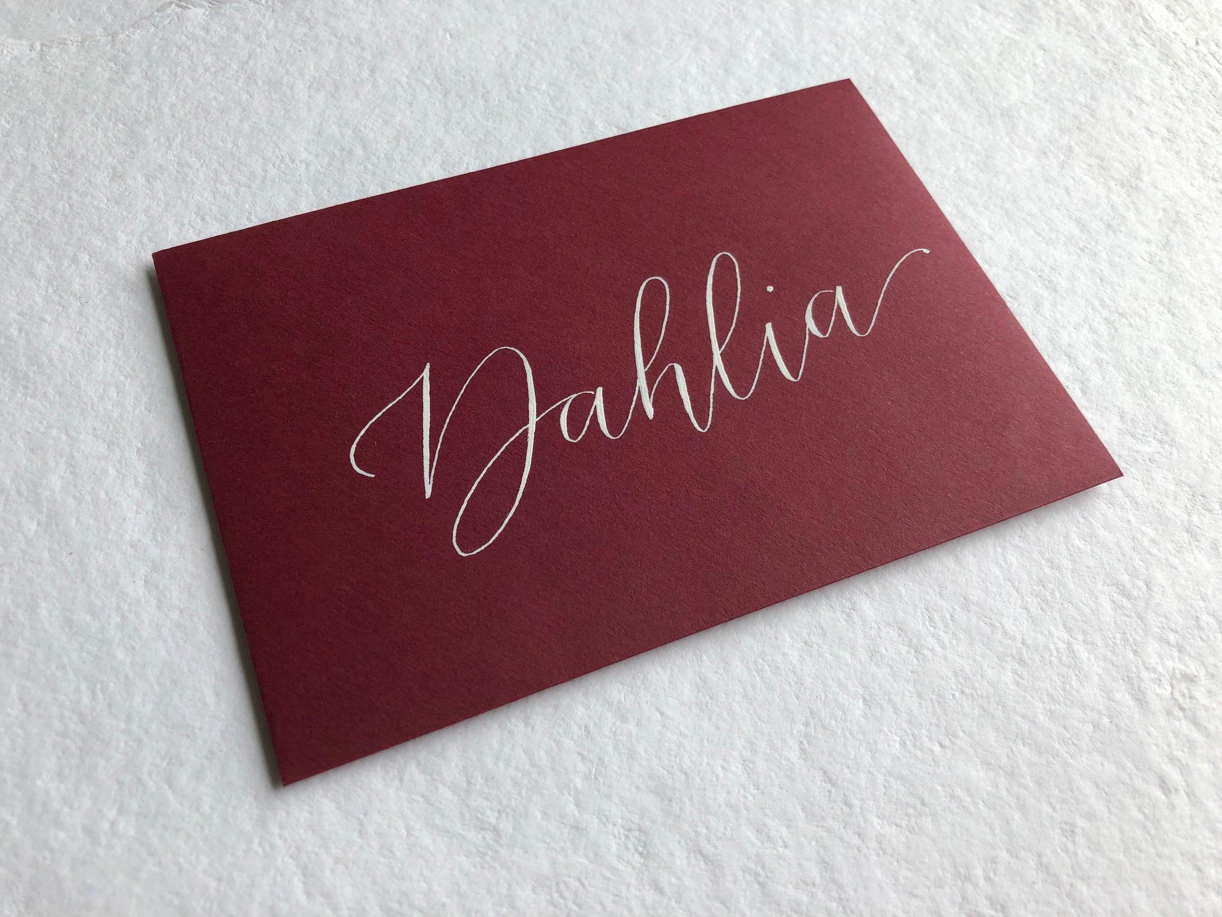 PS launch_Dahlia.JPG