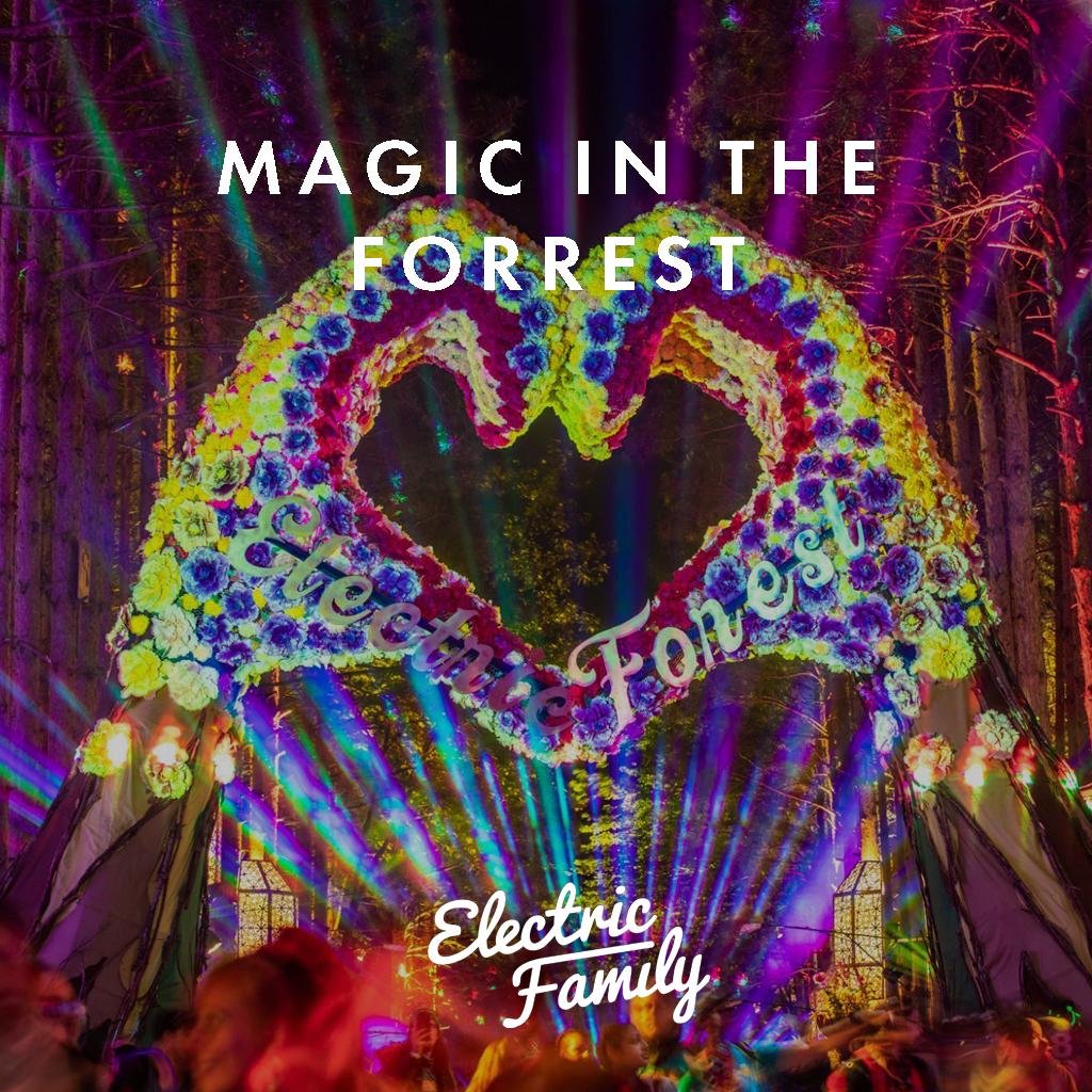 magic-forrest.jpg