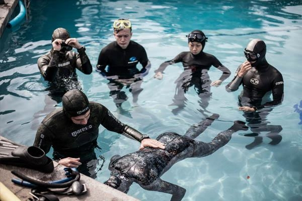 INTRO TO FREEDIVING  The PFI Introduction to Freediving course is an experience program that educates curious audiences on safety and problem management of freediving and breath-holding. This program  does no t include specific skills development or certification, but provides a  foundation  for people who want to understand the benefits of freediving before taking a recreational freediving course.