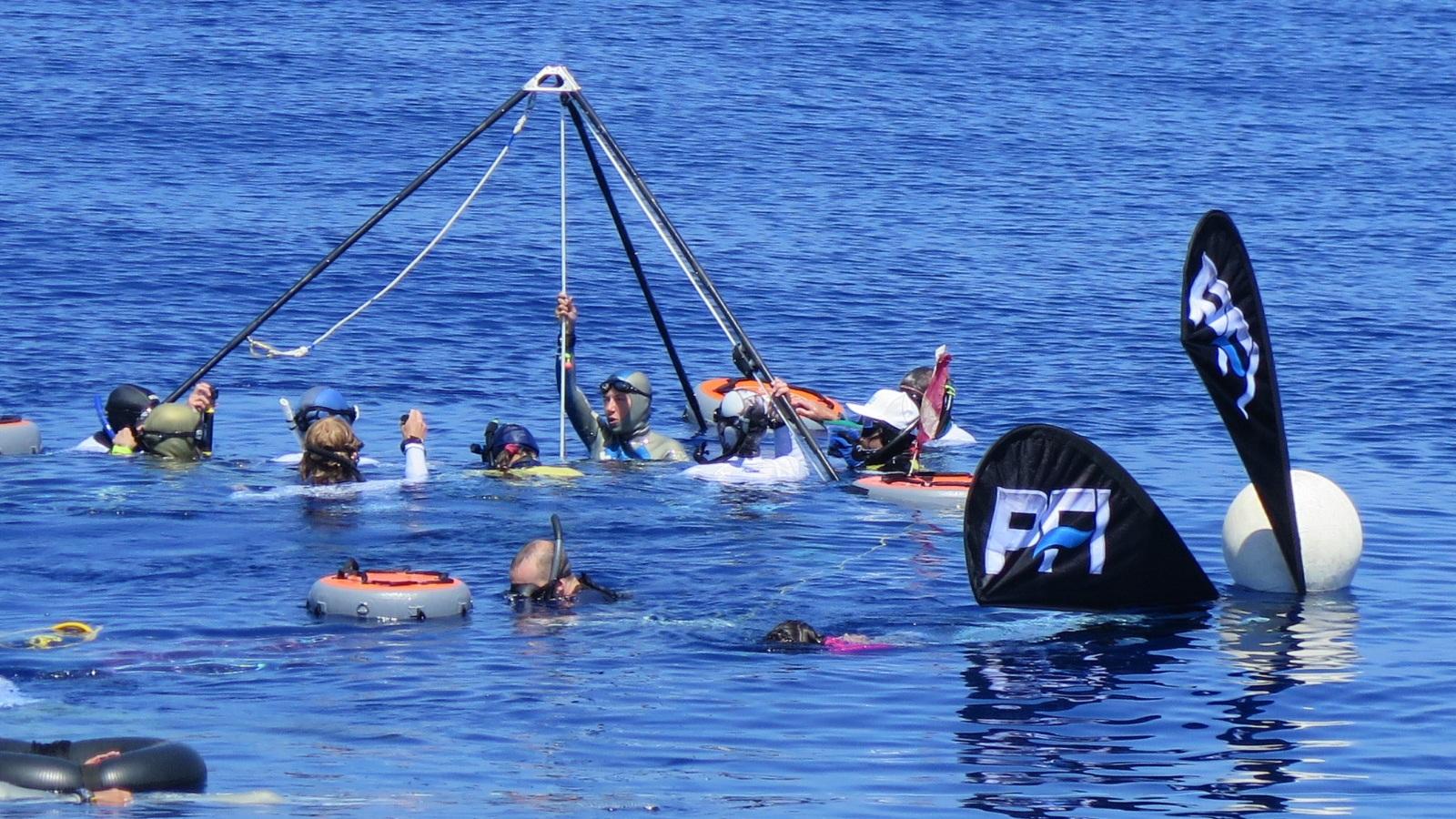 cayman camp freediving