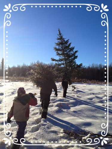 Brothers and Sister after a Successful Christmas Tree Hunt