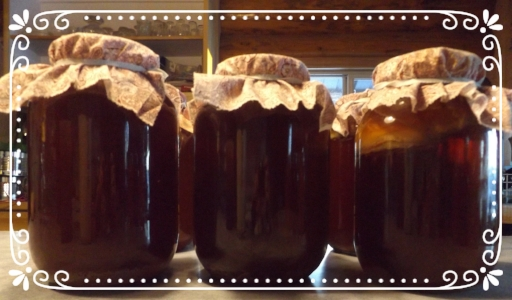 Gallon jars filled with pre-fermented kombucha ready for bottling