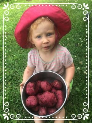 Grandma's little potato harvesting buddy.
