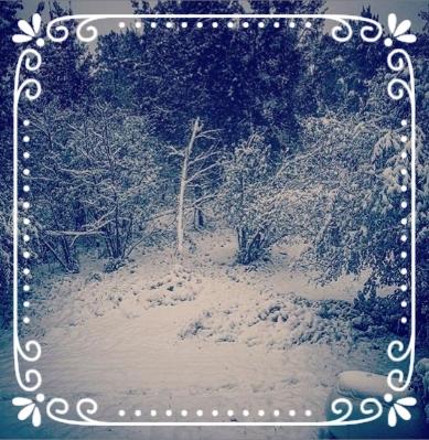 September 12th snow.jpg