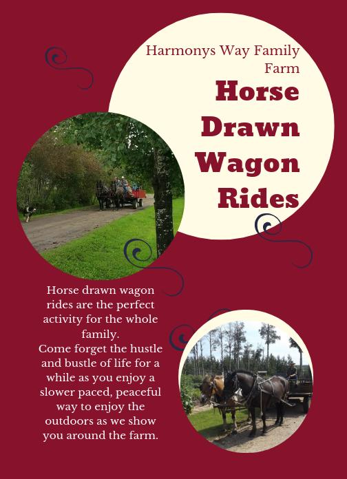 HorseDrawnWagonRides card.png