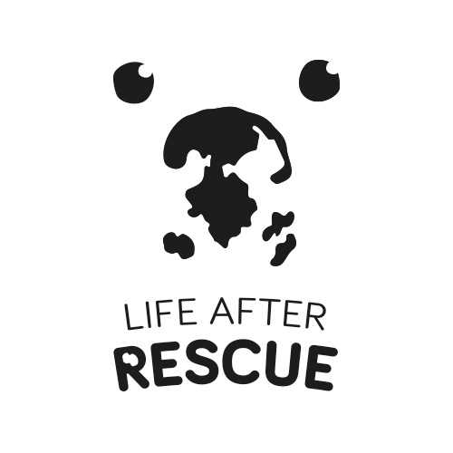 life-after-rescue-500x500.jpg