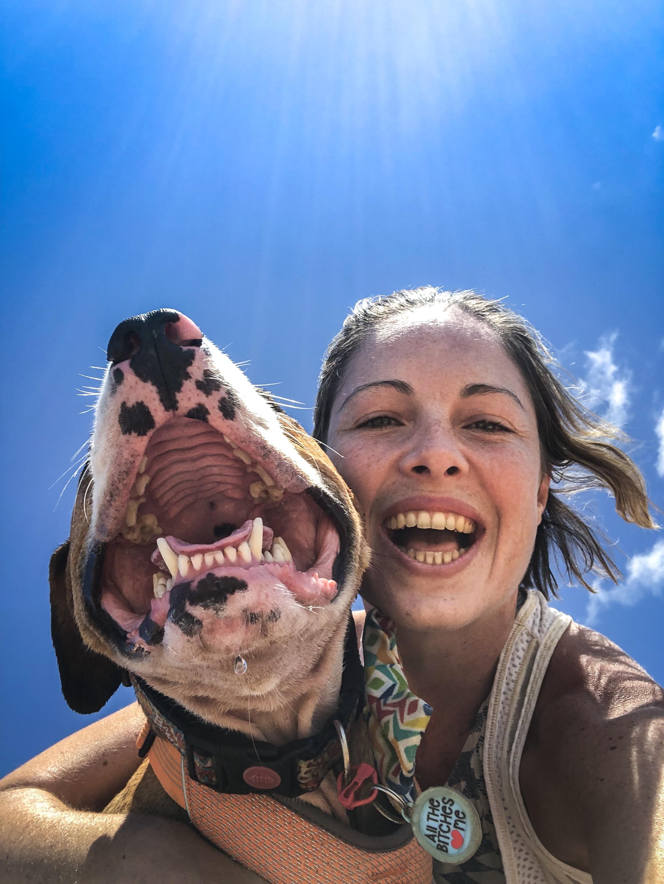 DogMum-HappyDog.jpg
