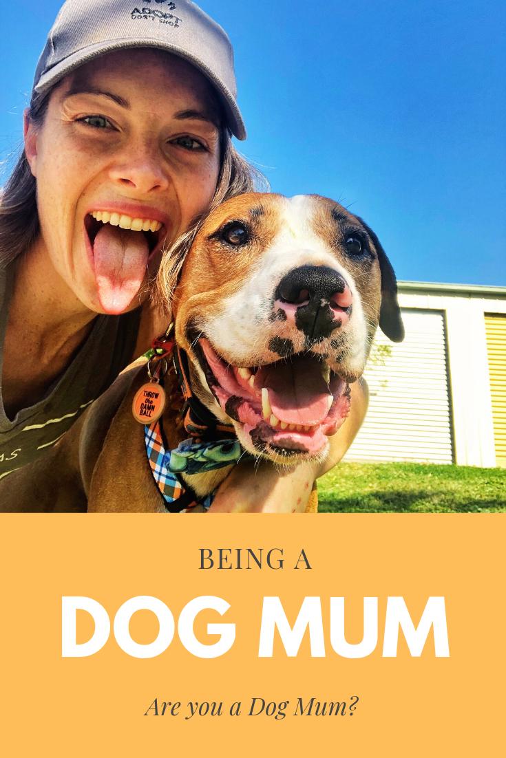 DogMum-RescueDog.png