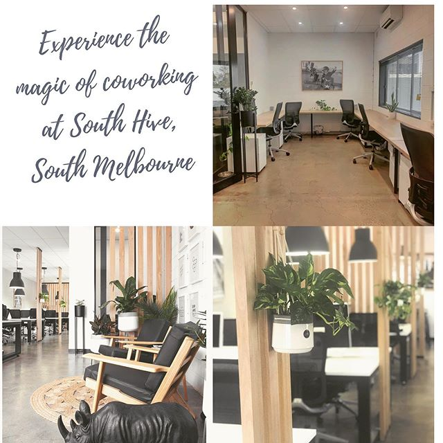 #southhivehub #coworkingmelbourne #southmelbourne #southmelbourneoffice #albertpark #portmelbourne #sharedofficemelbourne