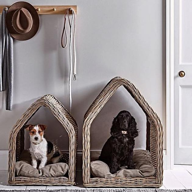 They also need their own little space and these from @coxandcox make you want a #pet  #organization #pets #professionalorganizer #tidyingup #homesweethome #tinyhouse
