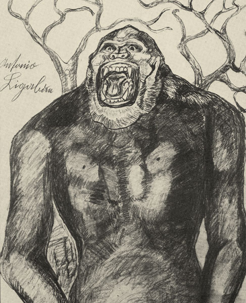 GORILLA DRAWING ON PAPER, 48x65 CM