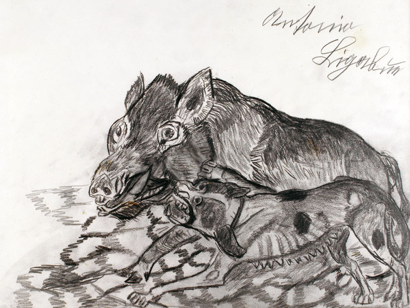 BOAR WITH A DOG DRAWING ON PAPER, 34x50 CM