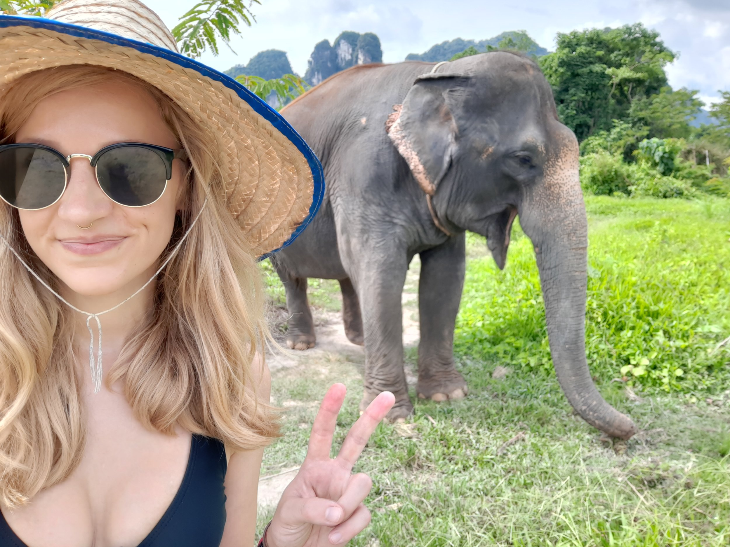elephant-sanctuary-tourism-thailand.jpg