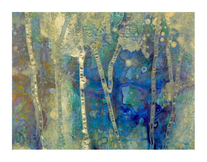 """""""Underwater forest"""""""