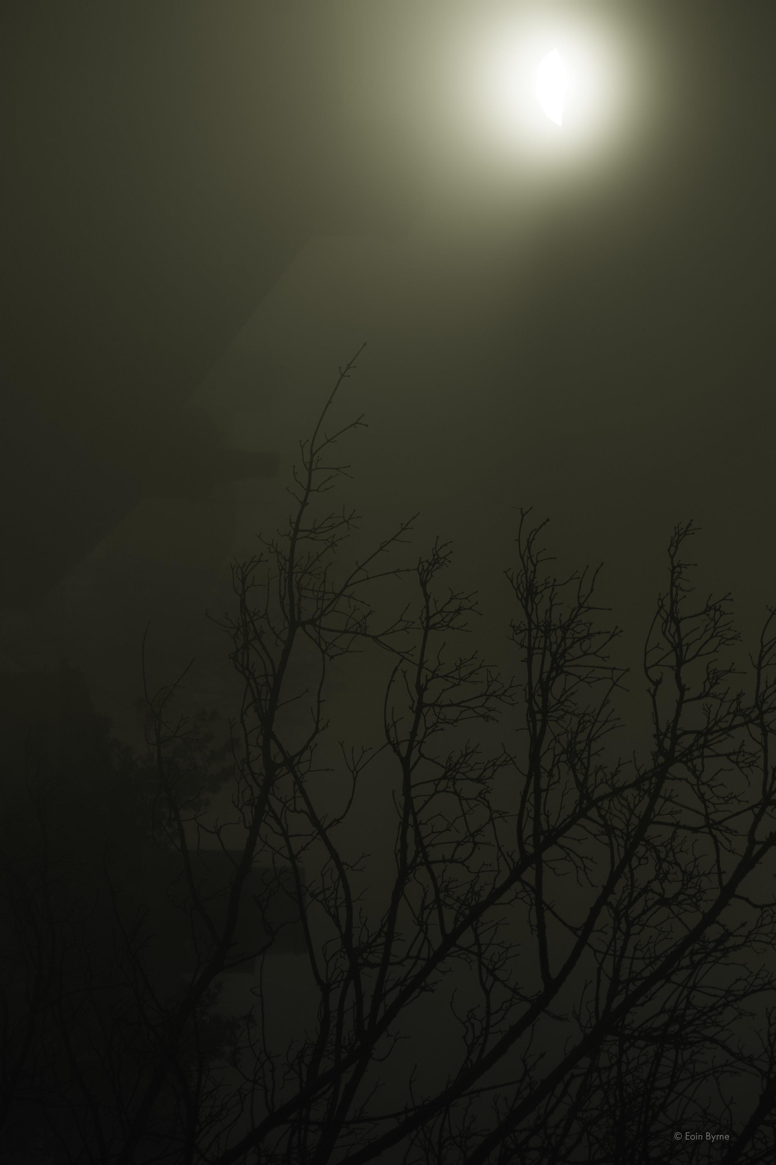 False moon 1.jpg