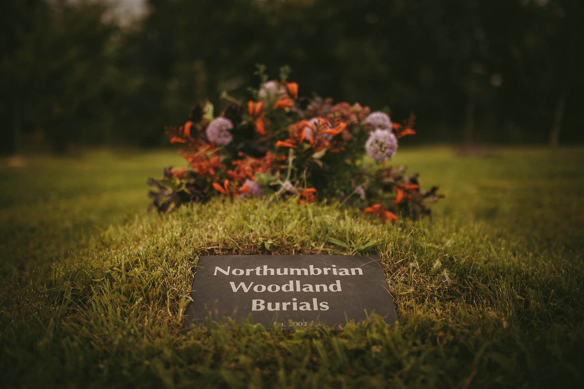 Northumbrian_Woodland_Burials_Aug17-33.jpg