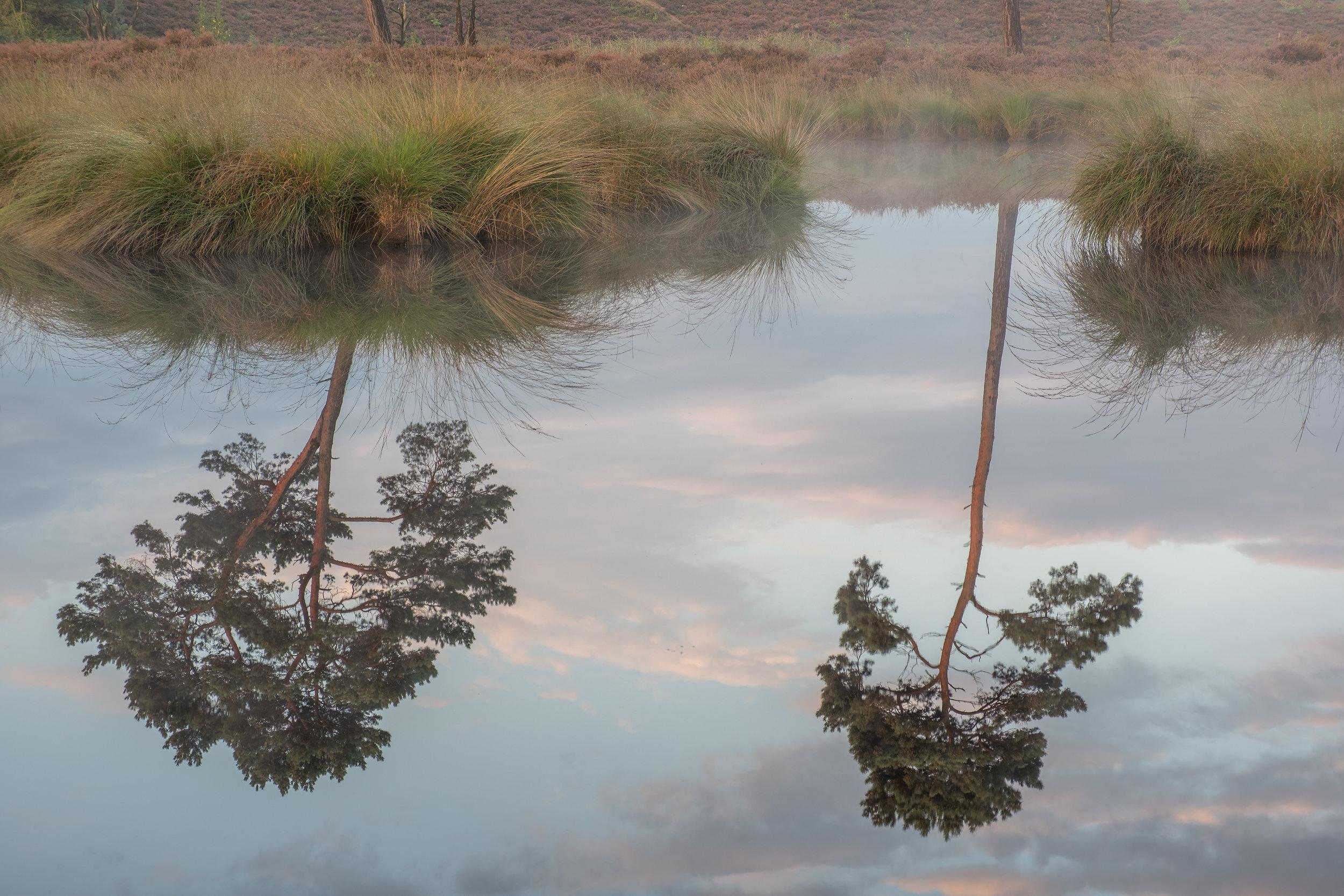 Hatertse Vennen met de karakteristieke bomen gespiegeld in het water; XF18-55mm, iso 200, f11, 1 sec, stop overbelicht, 55mm
