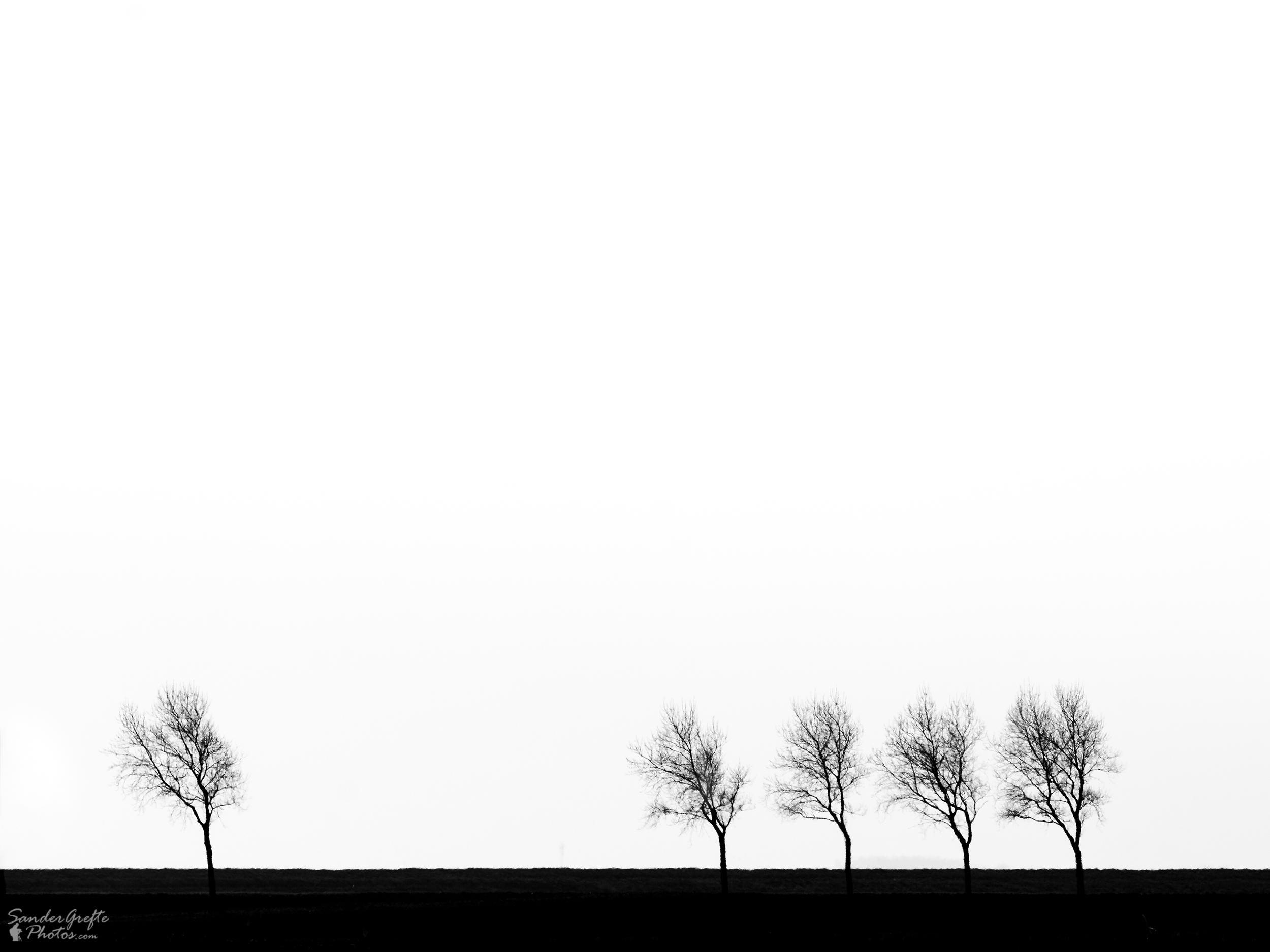 Bomen: 300mm, iso 100, f9, 1/640s