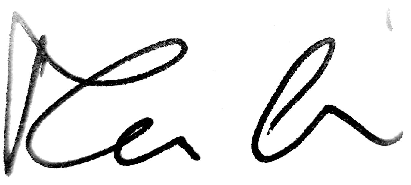 Mann Dániel   Leonardo41 Alapítvány Kuratóriumi elnök