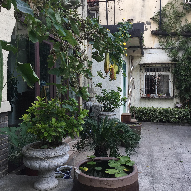 Shanghai Lanehouse