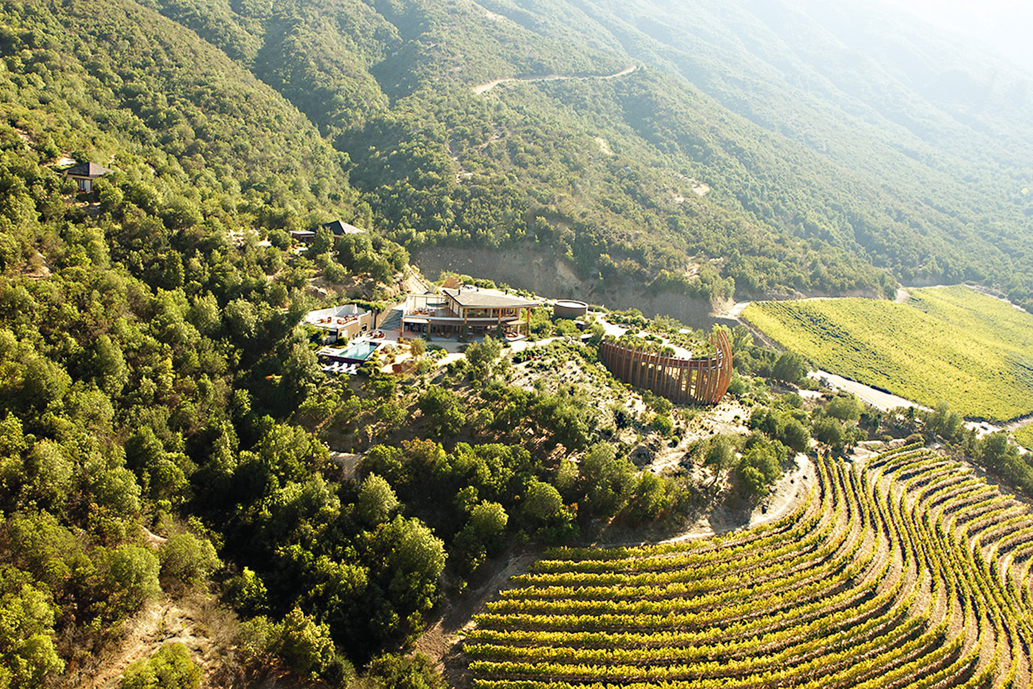 Vinos Dinámicos:Our Chilean Featured Wines of the Week -