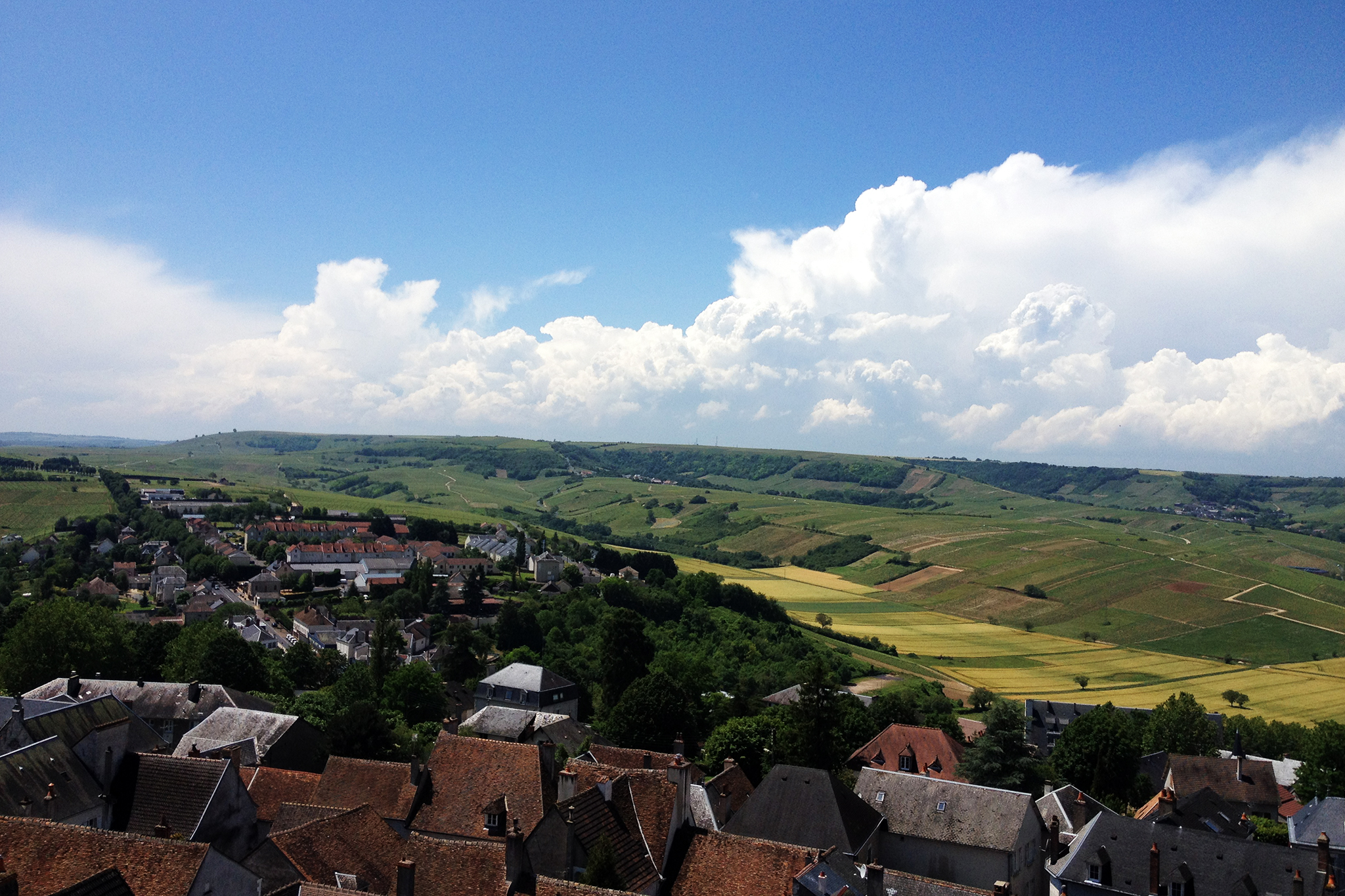The rolling slopes of Quincy in the Central Loire Valley.