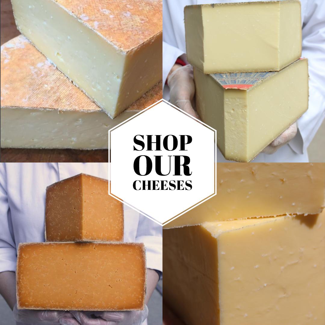 Cheese Promo Photo.jpg