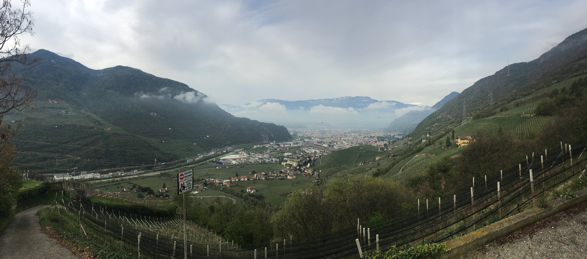 A view from a vineyard in St. Magdalener facing the village of Bolzano.