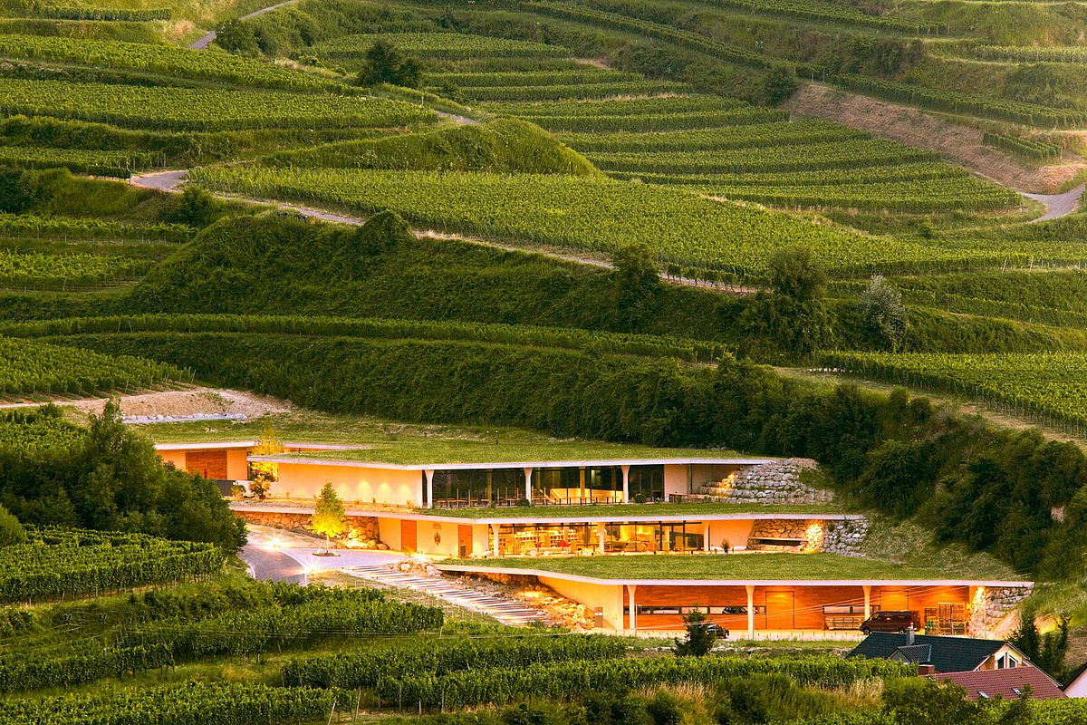 The estate of Weingut Keller