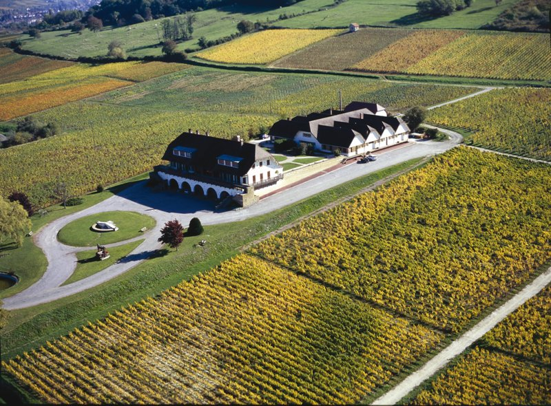 The stately Domaine de la Pinte