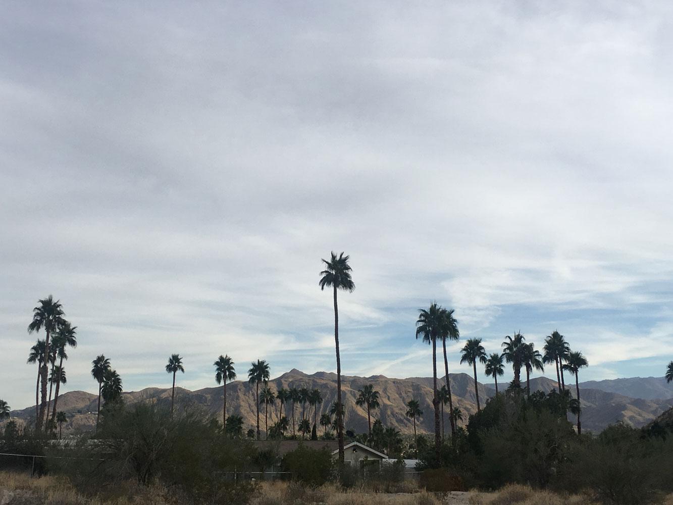 palm-springs5.jpg