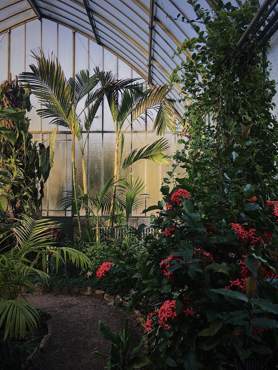 botanical_garden2.jpg