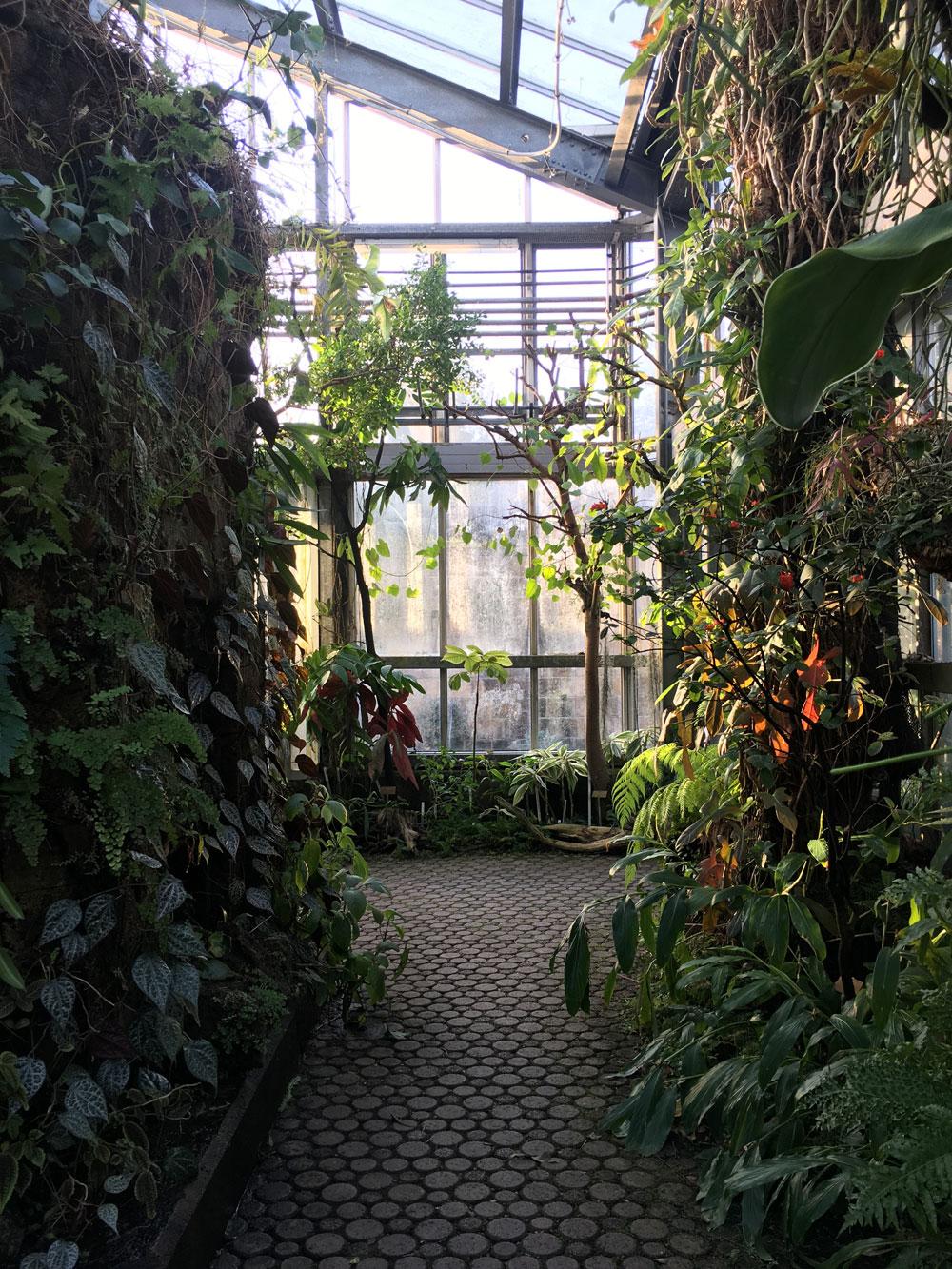 botanical_garden7.jpg