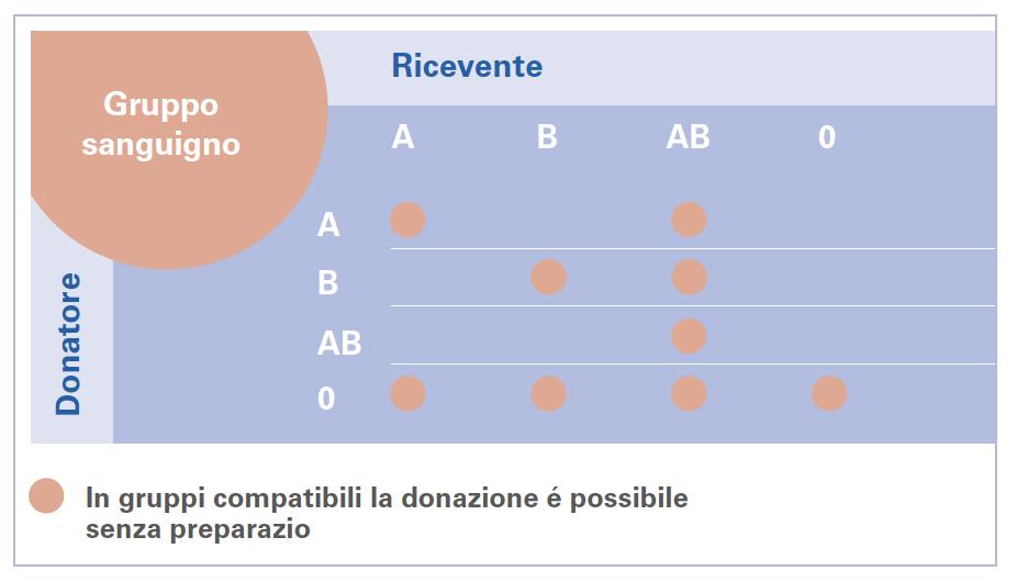 FigurA 2: Nell'essere umano sono conosciuti quattro gruppi sanguigni: A, B, AB e 0. Le compatibilità tra i diversi gruppi per trasfusioni o per il trapianto sono riassunte schematicamente nella figura 2. I donatori con gruppo sanguigno 0 sono considerati donatori universali, mentre i donatori con gruppo AB sono riceventi universali.