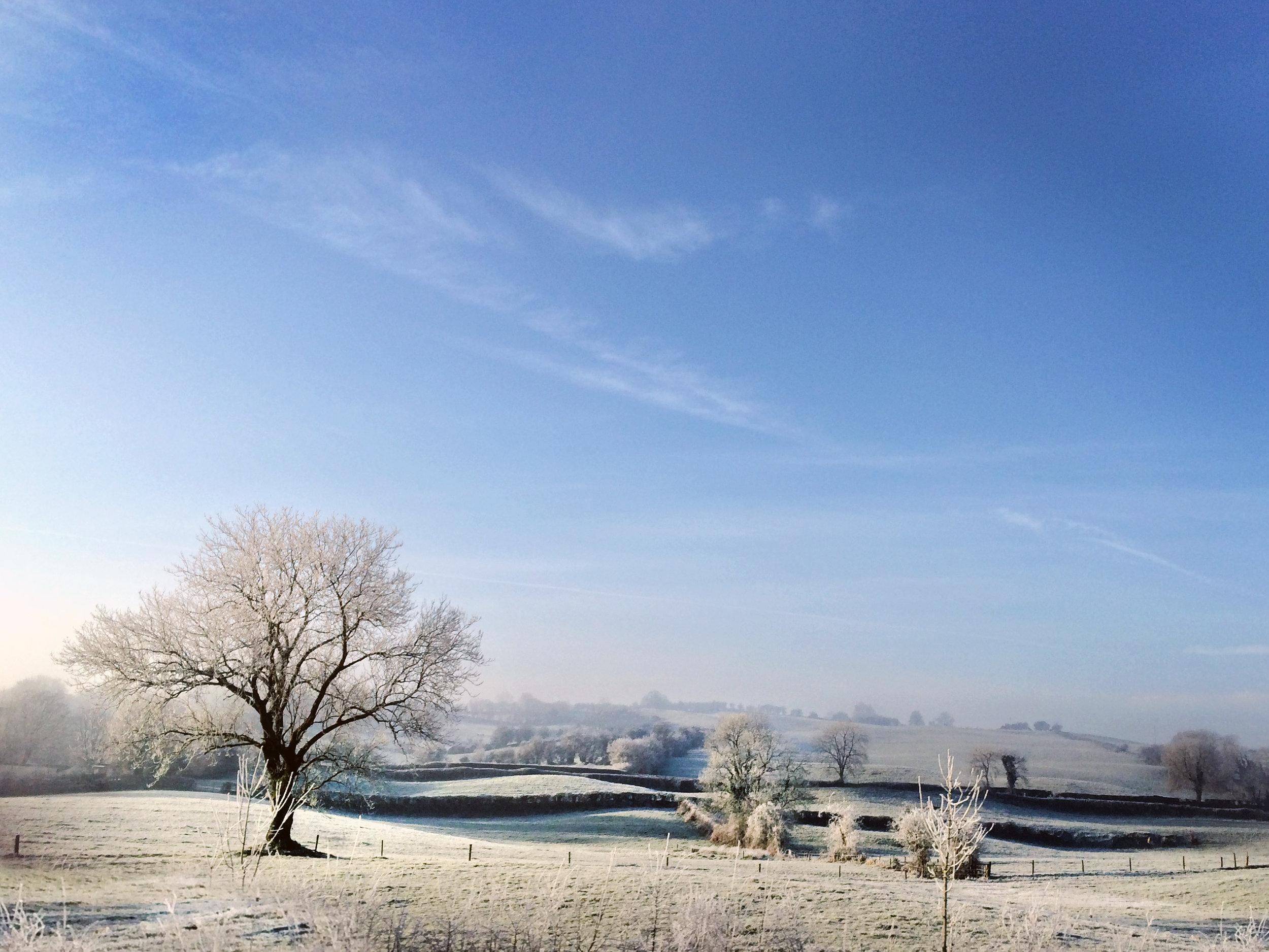 winter's morning.jpg