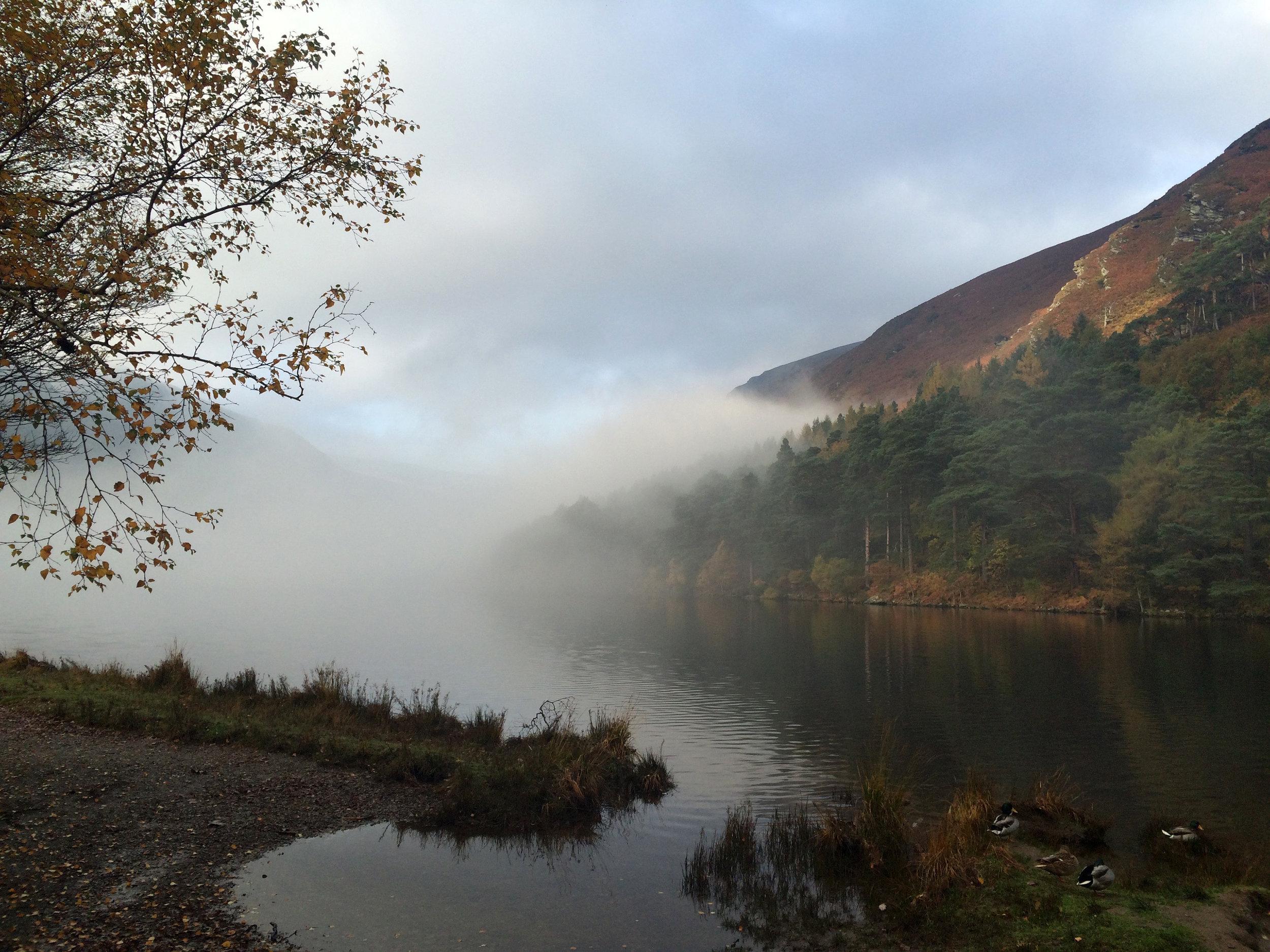mist river.jpg