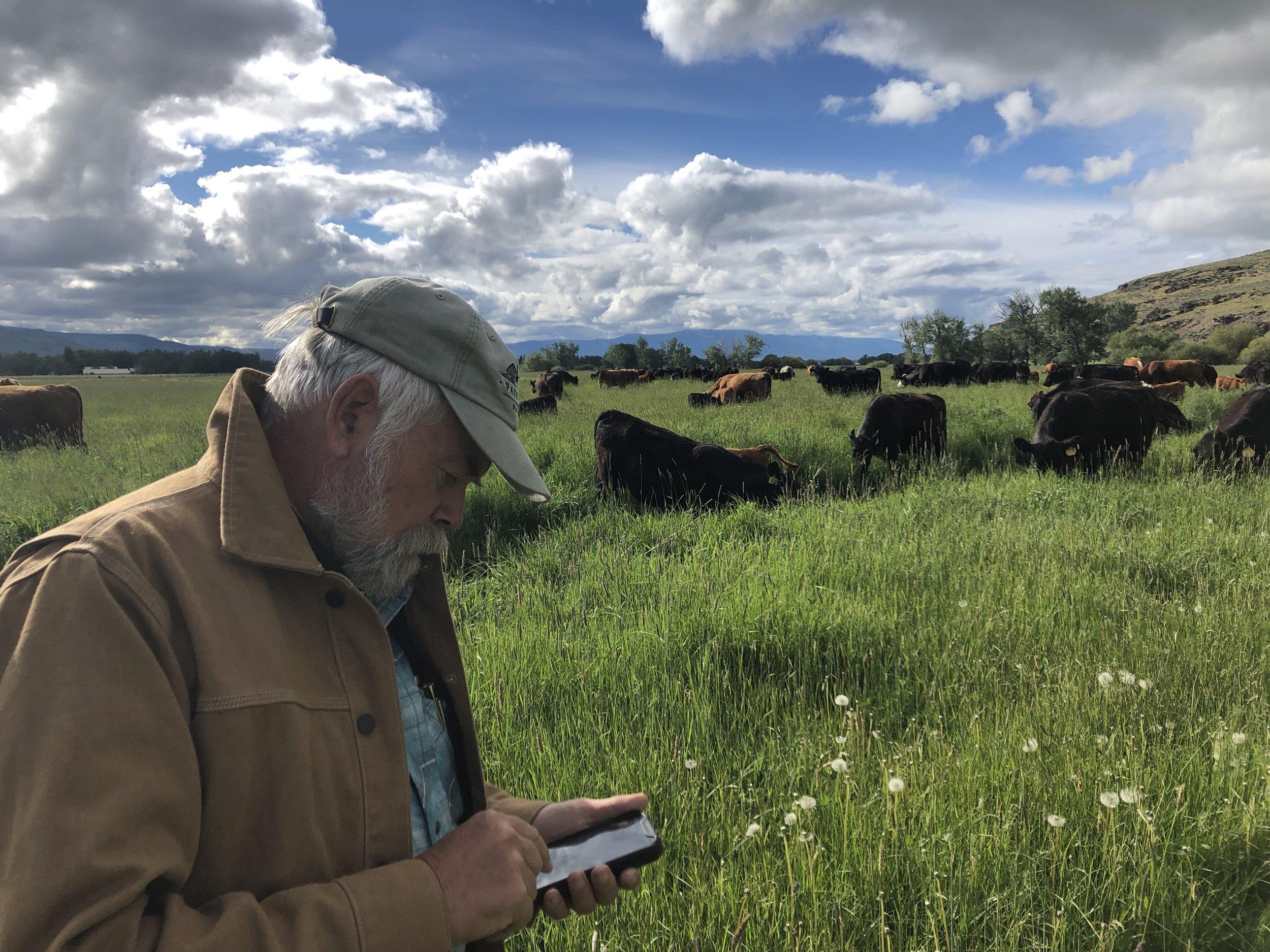 Peter Donovan entering data into  Atlasbiowork
