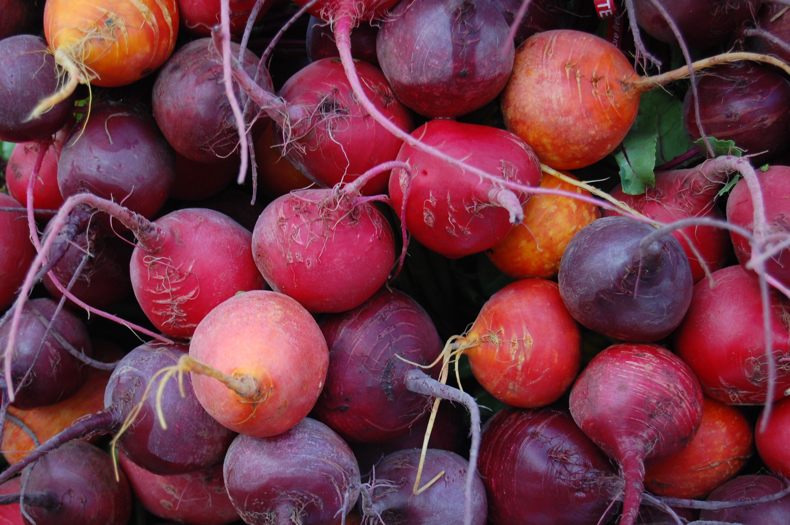beets-anti-inflammatory