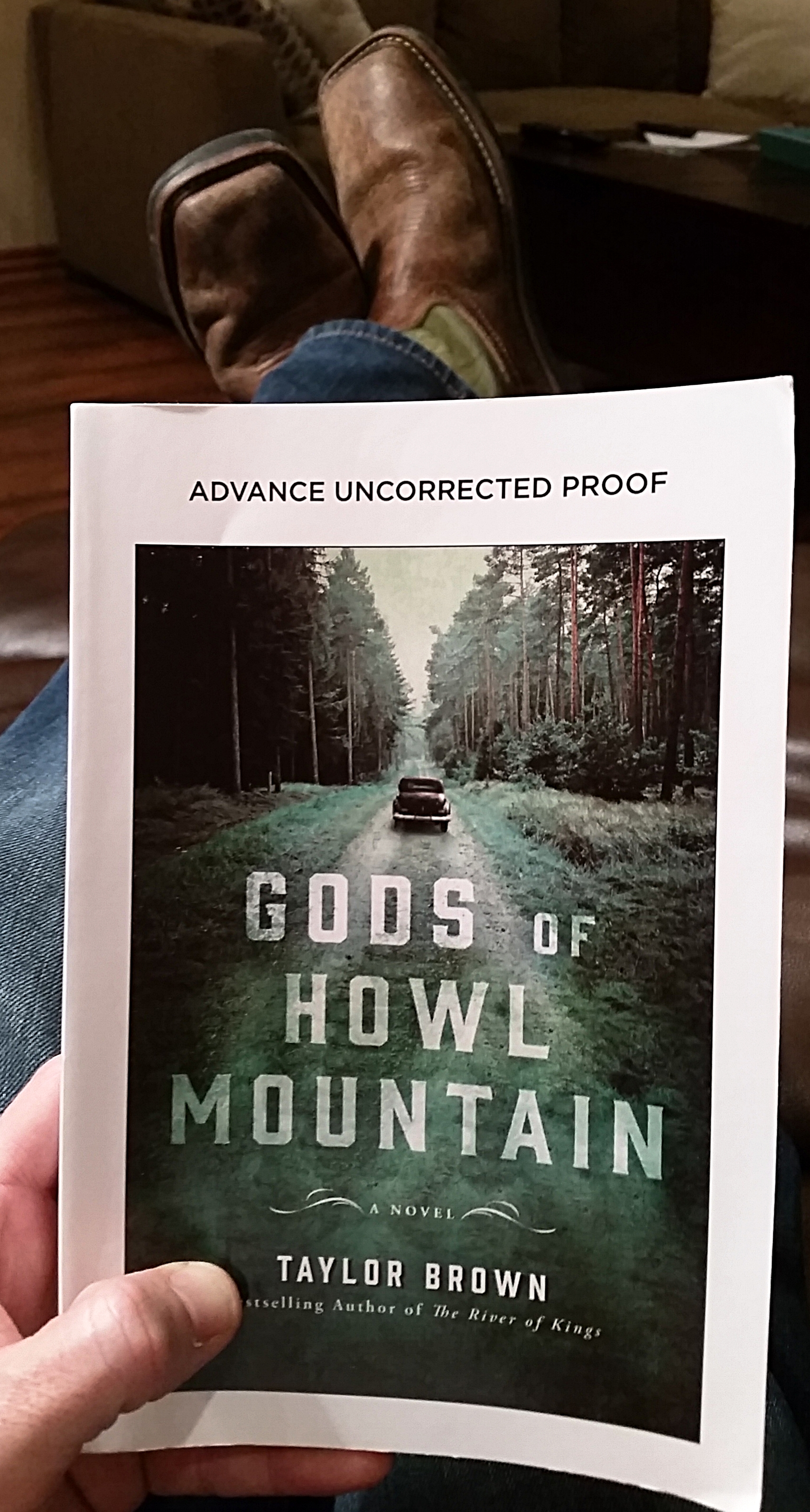 Gods of Howl Mountain Cover Picture by andhereads.jpg
