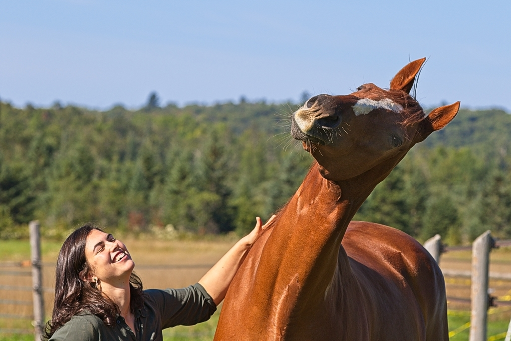 carmen-theobald-true-presence-horse-sense-equine-facilitated-learning-efl-atticus-business-personal-development-eponaquest.jpg