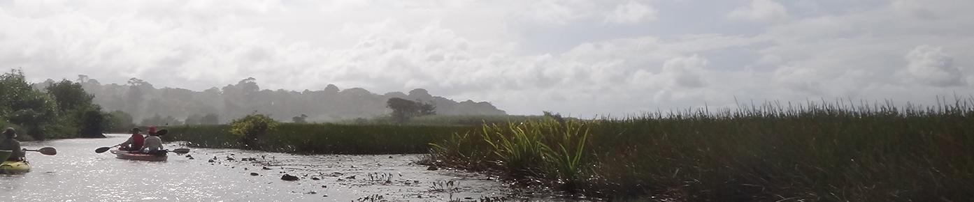 Nariva swamp - Amy Deacon.JPG