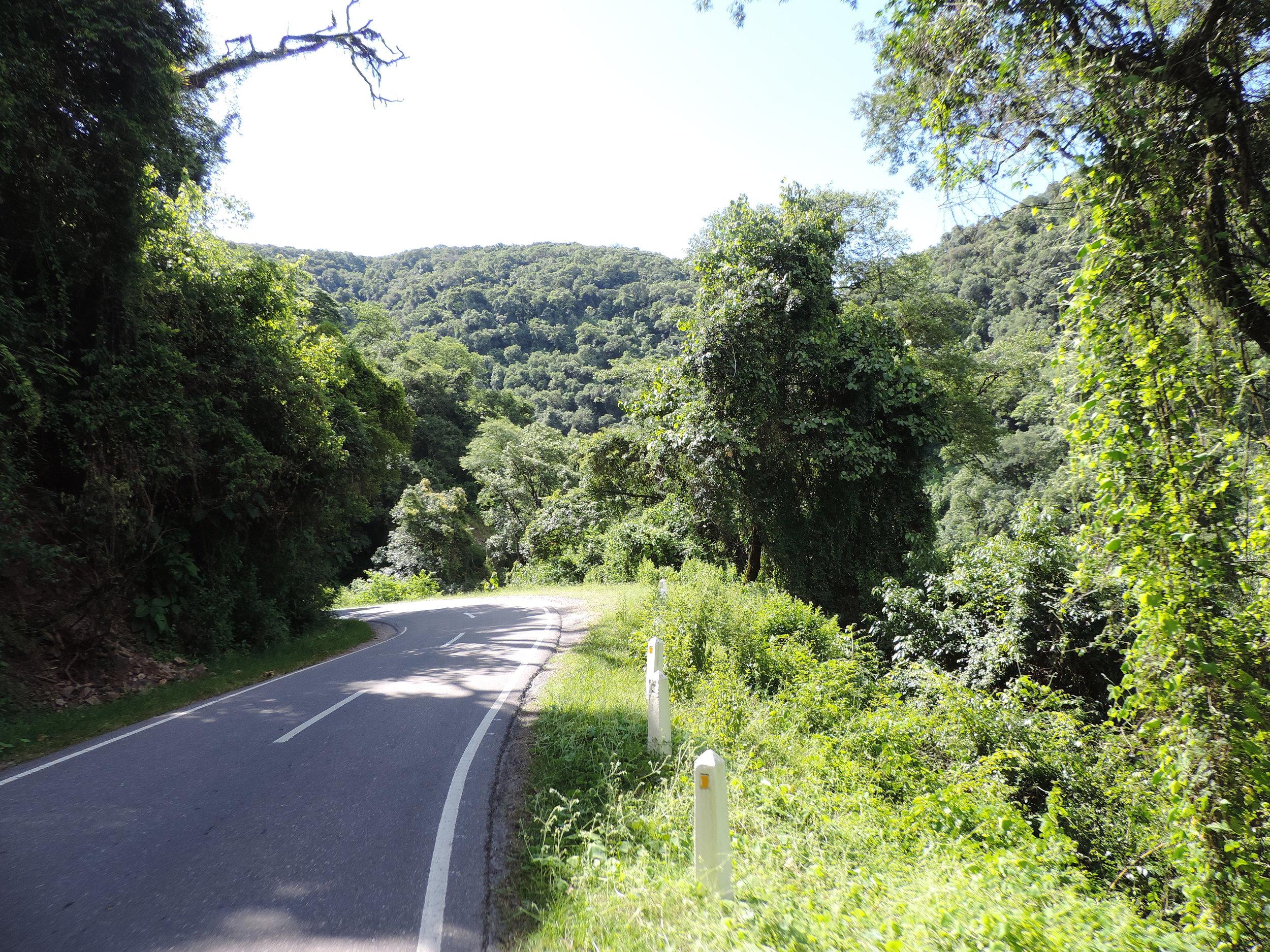tropical paved_DSCN1175.JPG