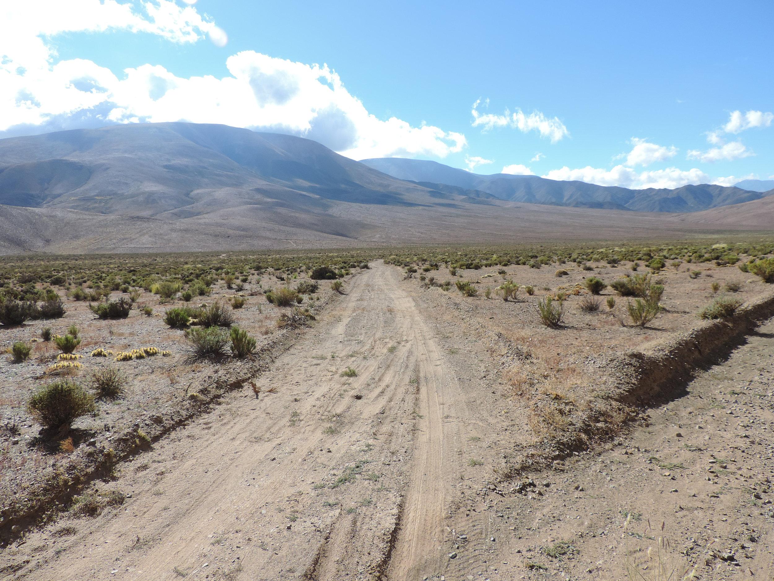 Desert DSCN1444.JPG